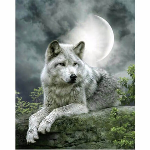 Diamond Painting White Wolf Under Moon - OLOEE