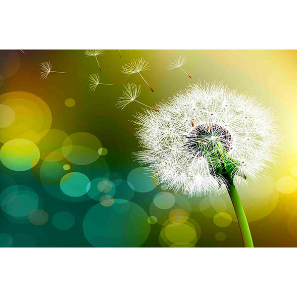 Diamond Painting Sunshine Dandelion - OLOEE