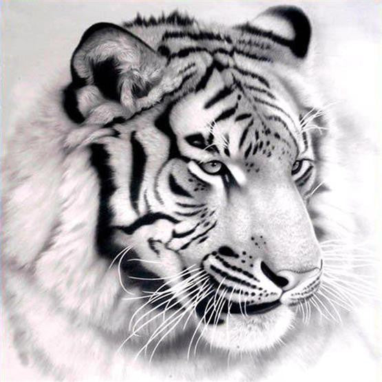 Diamond Painting Tiger Pictures Of Rhinestones - OLOEE