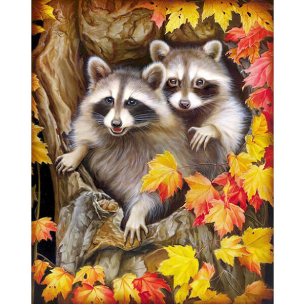 Diamond Painting Two Racoons Animal - OLOEE