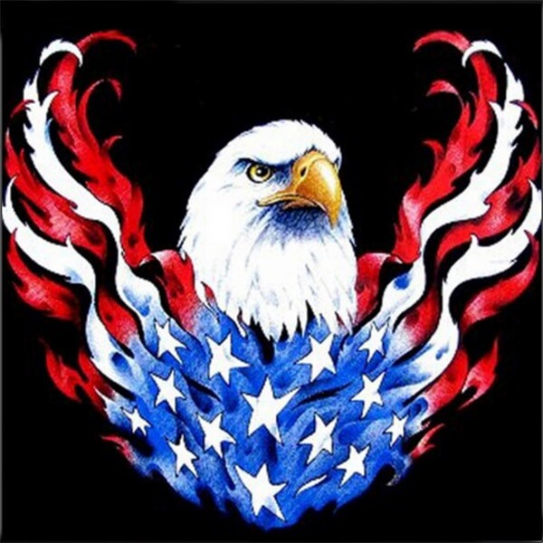 Diamond Painting Burning American Eagle - OLOEE