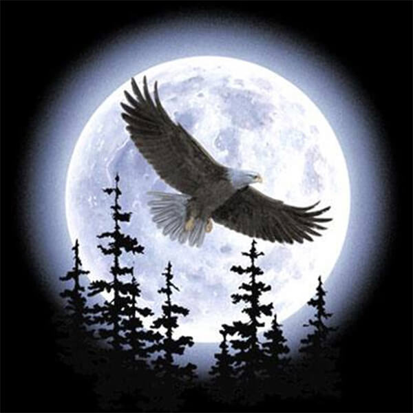 Diamond Painting Moonlit Quest Eagle - OLOEE