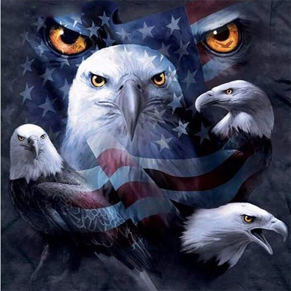 Diamond Painting American Eagle - OLOEE