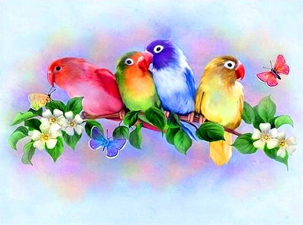 Diamond Painting Colorful And Lovely Birds - OLOEE