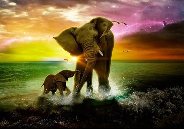 Diamond Oloee, Mother And Baby Elephant - OLOEE
