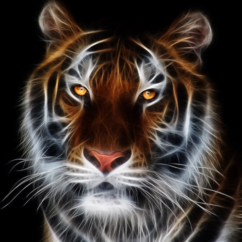 Diamond Painting Yellow Eyed Tiger - OLOEE