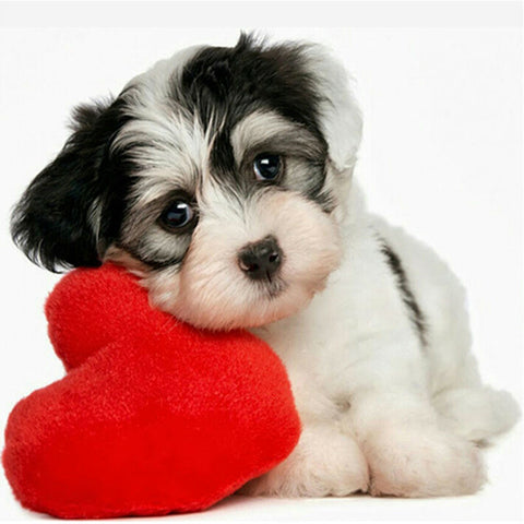 Diamond Oloee I Love Dogs - OLOEE