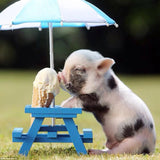 Diamond Oloee Pigs eat Ice Cream - OLOEE