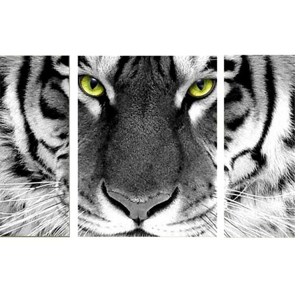 Diamond Painting Yellow Eyes Tiger - OLOEE