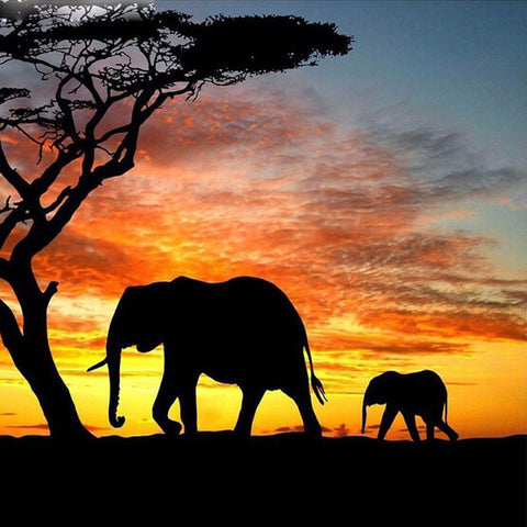 Diamond Painting Sunset Elephant Animal - OLOEE
