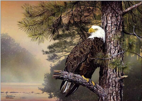 Diamond Painting Eagle On Tree - OLOEE