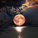 Diamond Painting Full Moon Night - OLOEE