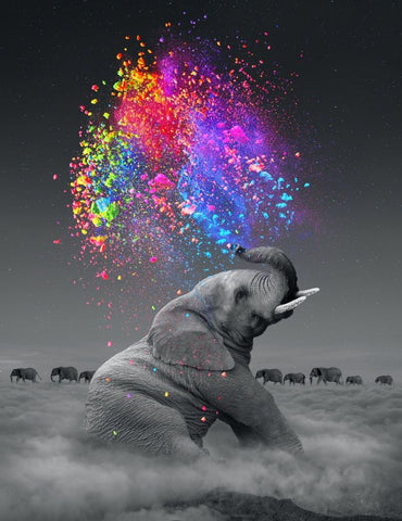 Diamond Painting Water Sprinkle Elephant - OLOEE
