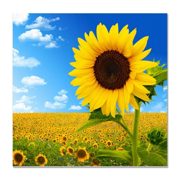 Diamond Painting Oloee Diamond Sunflower Field - OLOEE