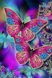 Diamond Painting Two Diamond Butterfly - OLOEE