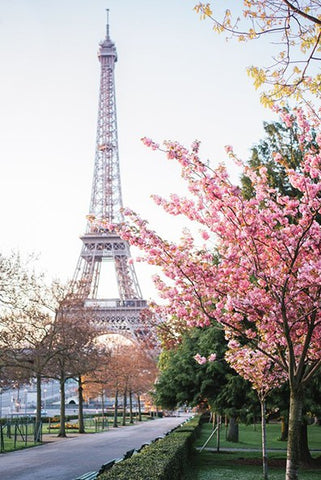 Romantic Paris - OLOEE