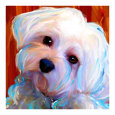 Diamond Painting Maltese Dog Pet - OLOEE