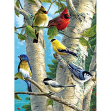 Diamond Painting Birds On Tree - OLOEE