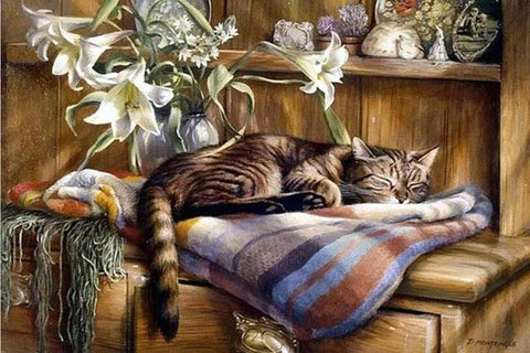 Diamond Painting Dozing Gray Cat - OLOEE