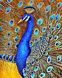 Diamond Painting Blue Peacock - OLOEE
