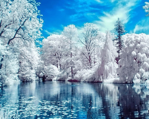 Diamond Painting Winter Lake Scene - OLOEE