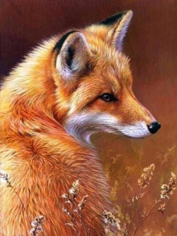 Diamond Painting Dear Fox - OLOEE