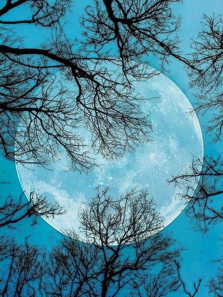 Diamond Painting Full Moon - OLOEE