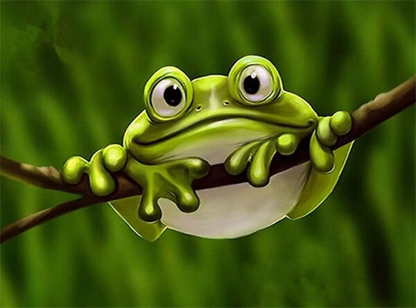 Diamond Painting Cute Frog - OLOEE