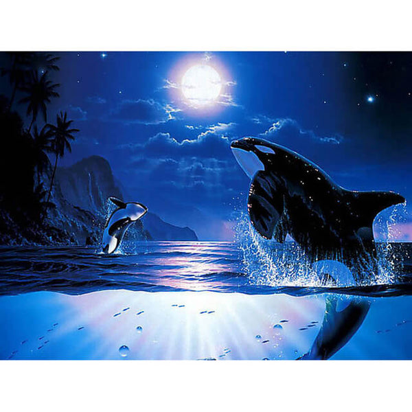 Diamond Painting Moonlight Sea - OLOEE