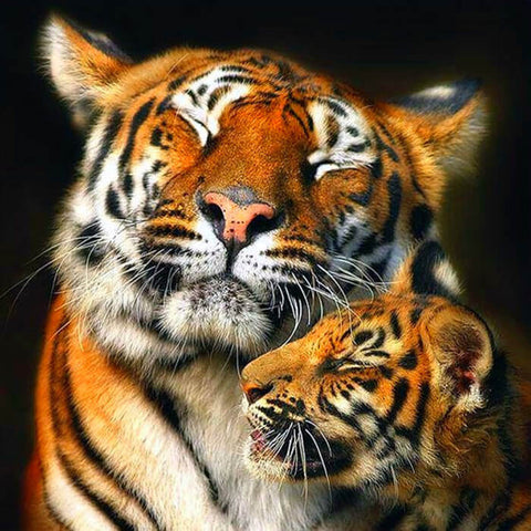Diamond Painting Tiger Mom Love - OLOEE