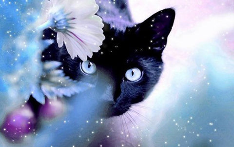 Diamond Painting Cute Black Cat - OLOEE