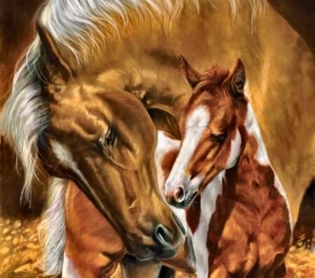 Diamond Painting Sweet Horse Animal - OLOEE