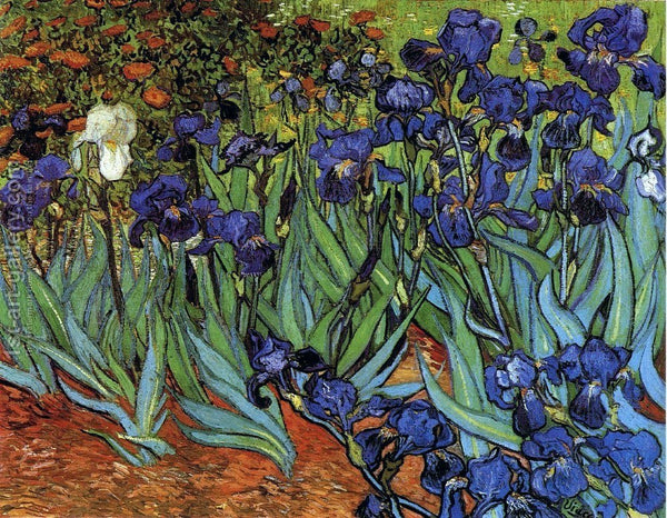 Diamond Painting Irises Van Gogh - OLOEE