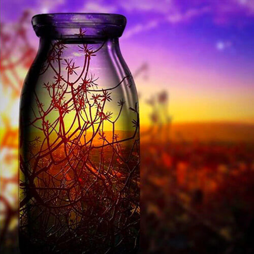 Diamond Painting Flower Landscape In Bottle - OLOEE