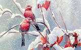 Diamond Painting Red Birds On Branch With Snow - OLOEE