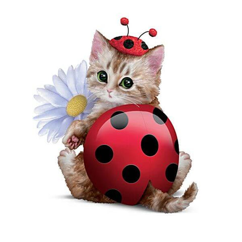 Diamond Oloee Flower Bug Cat - OLOEE