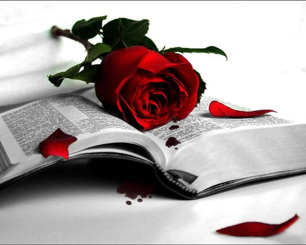 Diamond Painting Red Rose Book - OLOEE