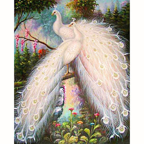 Diamond Painting White Albino Peacock - OLOEE