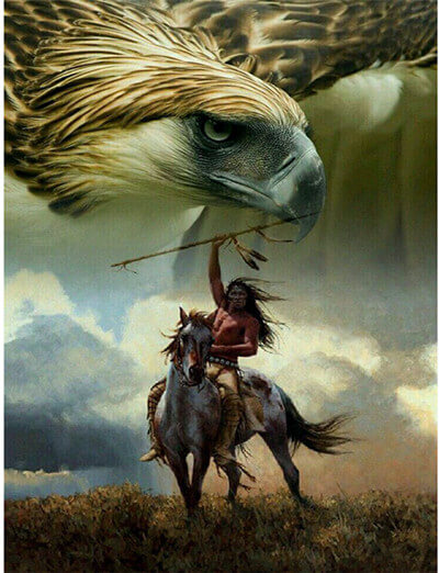 Indian Horse Eagle 5d Diamond Painting Kits Oloee