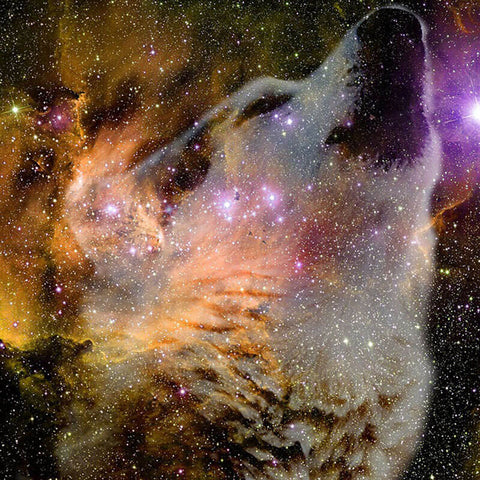 Diamond Painting Galaxy Wolf - OLOEE