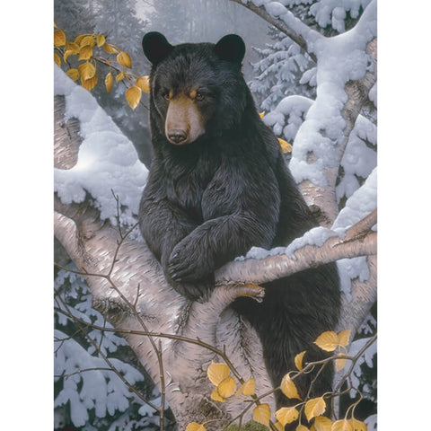 Diamond Painting Black Bear On Tree - OLOEE