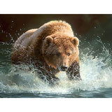 Diamond Painting Grizzly Bear - OLOEE