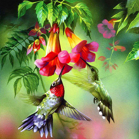 Diamond Painting Hummingbird - OLOEE