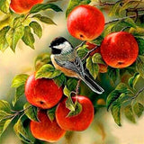 Diamond Painting Orchard Bird - OLOEE