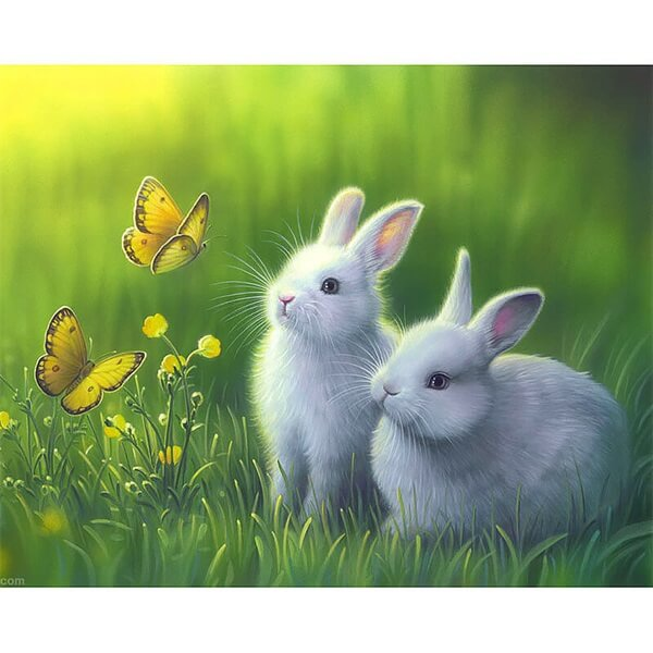 Diamond Painting Butterfly And White Rabbit Animal - OLOEE