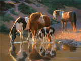 Diamond Painting Water Reflection Of Horses - OLOEE