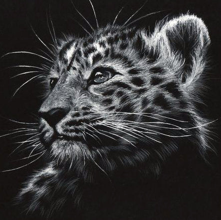 Diamond Painting Leopard Head - OLOEE