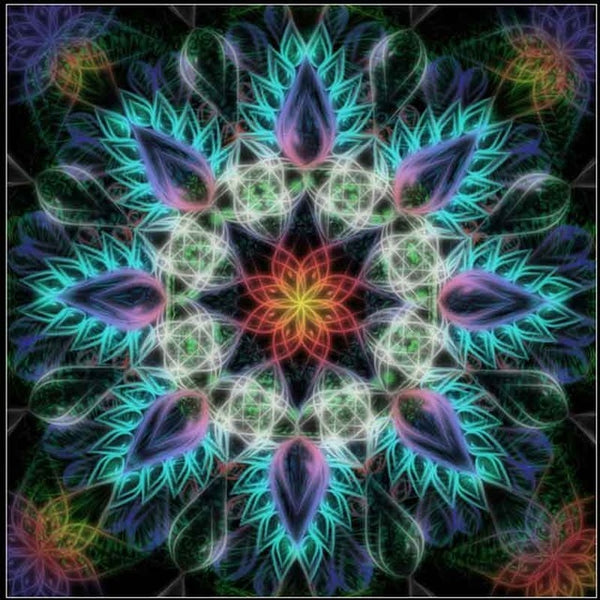 Diamond Painting Mandala Coloring - OLOEE