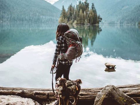Backpacking with your adventure dog