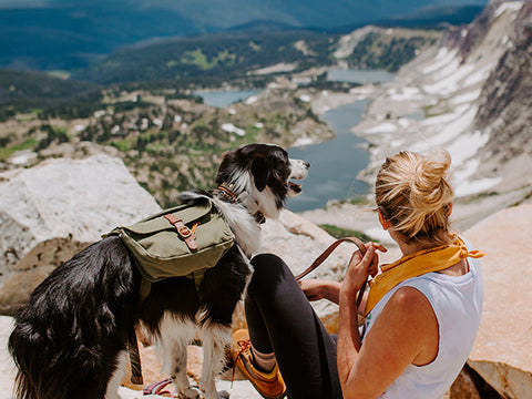 backpacking trip with dog